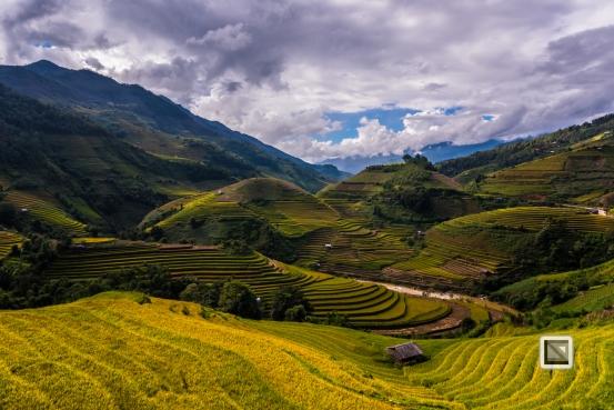vietnam-mu_cang_chai-yen_bai_province-154
