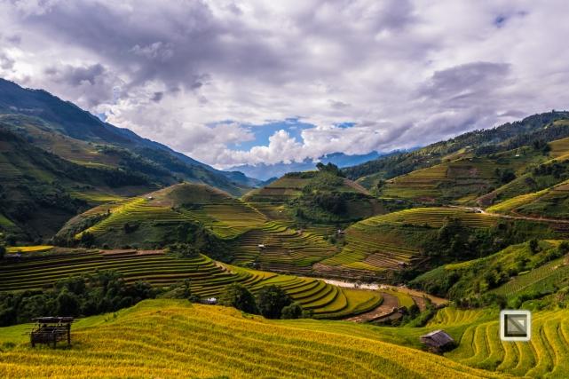 vietnam-mu_cang_chai-yen_bai_province-155