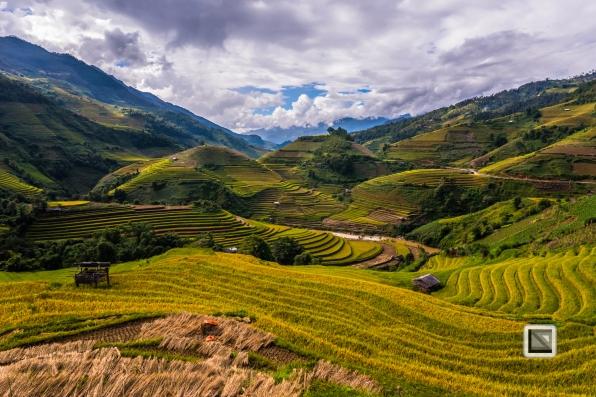 vietnam-mu_cang_chai-yen_bai_province-156