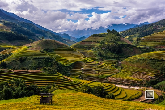 vietnam-mu_cang_chai-yen_bai_province-160