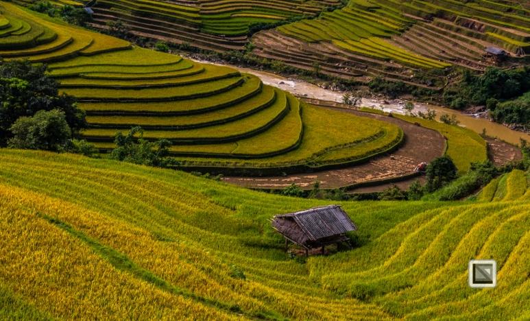 vietnam-mu_cang_chai-yen_bai_province-162