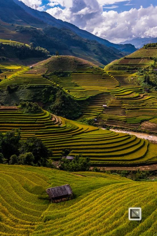 vietnam-mu_cang_chai-yen_bai_province-176