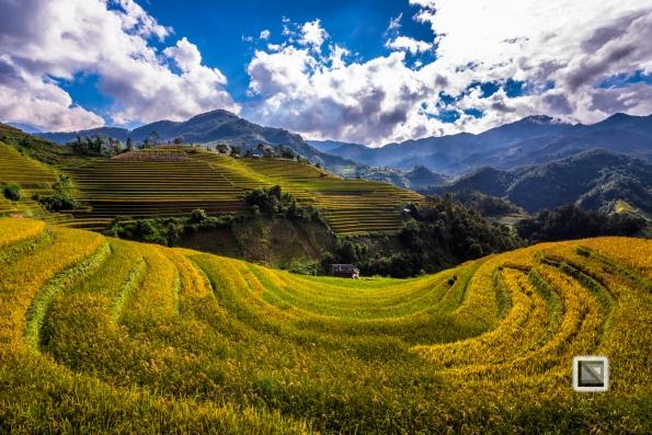 vietnam-mu_cang_chai-yen_bai_province-178