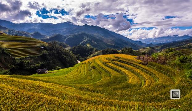 vietnam-mu_cang_chai-yen_bai_province-179