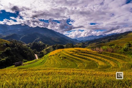 vietnam-mu_cang_chai-yen_bai_province-182