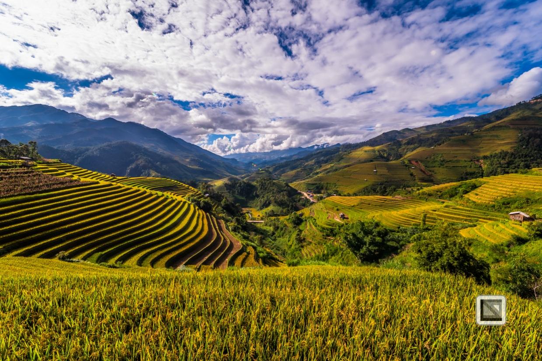 vietnam-mu_cang_chai-yen_bai_province-183