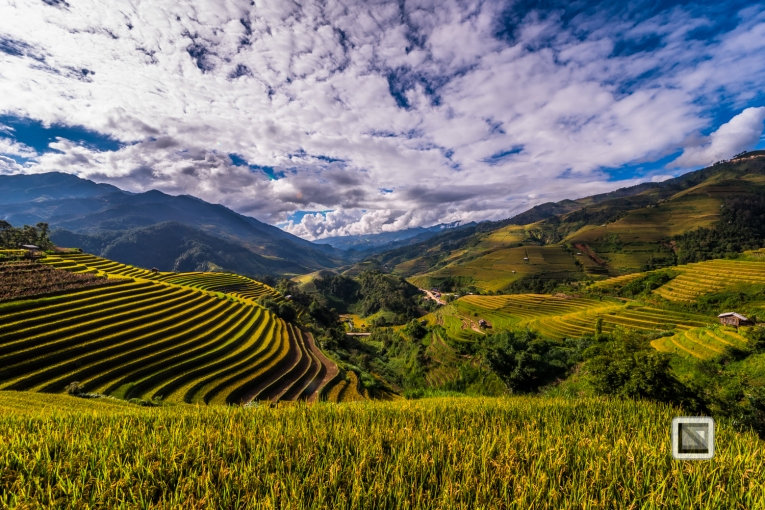vietnam-mu_cang_chai-yen_bai_province-185