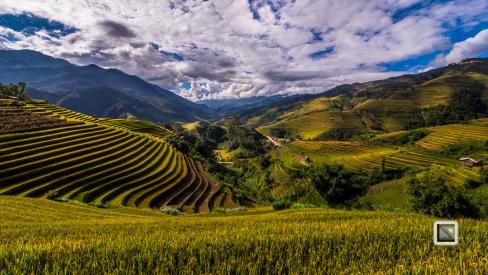 vietnam-mu_cang_chai-yen_bai_province-187