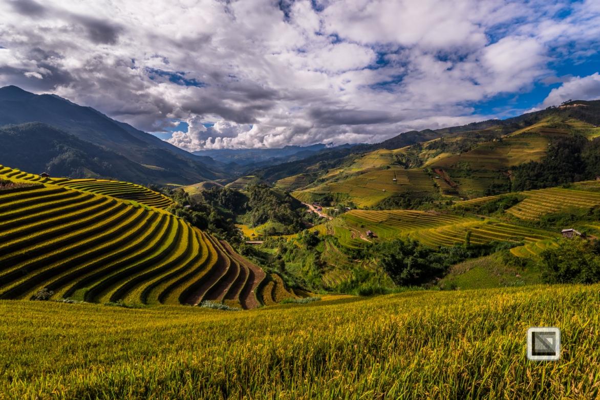 vietnam-mu_cang_chai-yen_bai_province-189