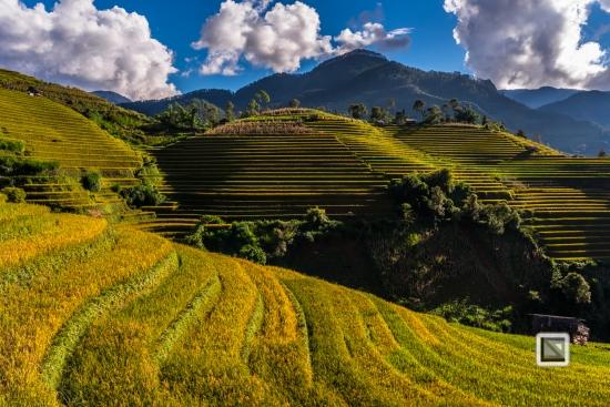 vietnam-mu_cang_chai-yen_bai_province-207