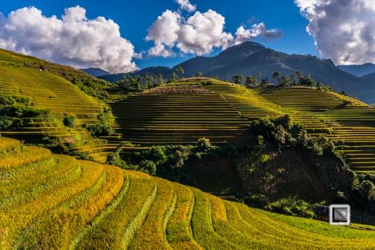 vietnam-mu_cang_chai-yen_bai_province-208