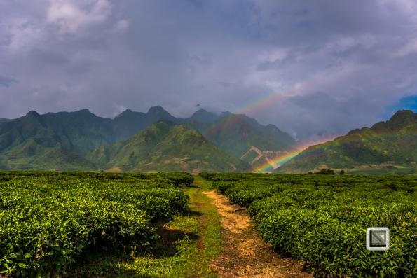 vietnam-mu_cang_chai-yen_bai_province-21