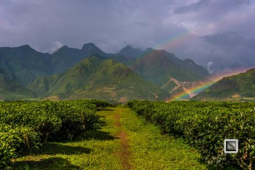 vietnam-mu_cang_chai-yen_bai_province-22