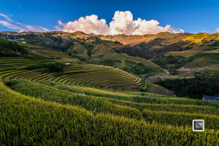vietnam-mu_cang_chai-yen_bai_province-226