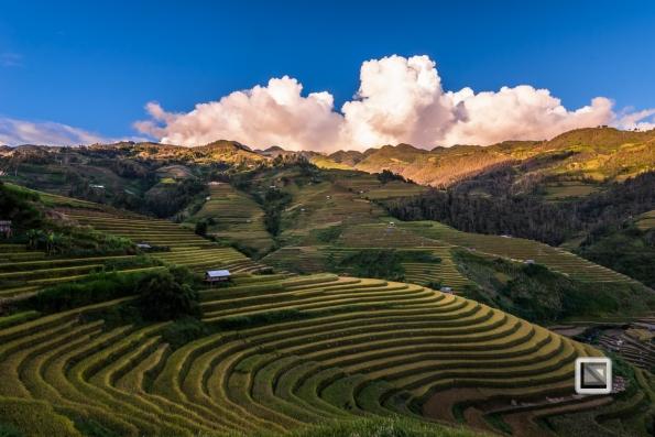 vietnam-mu_cang_chai-yen_bai_province-227