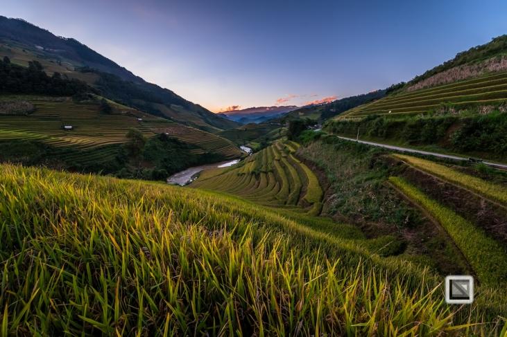 vietnam-mu_cang_chai-yen_bai_province-229