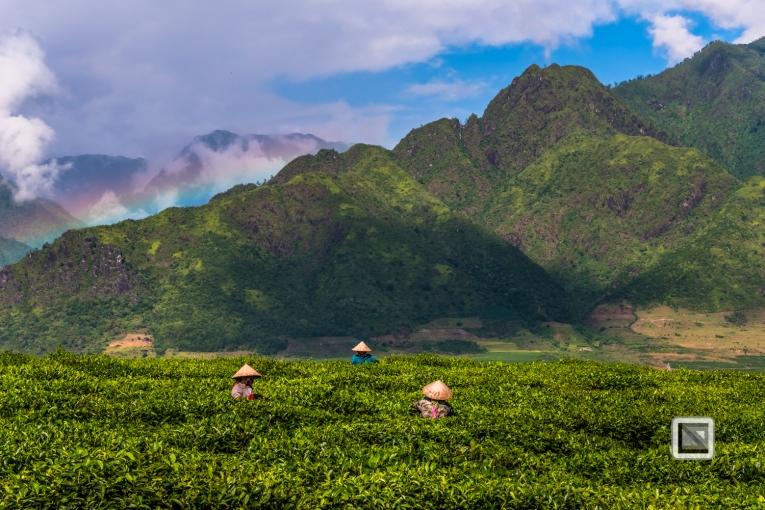vietnam-mu_cang_chai-yen_bai_province-38