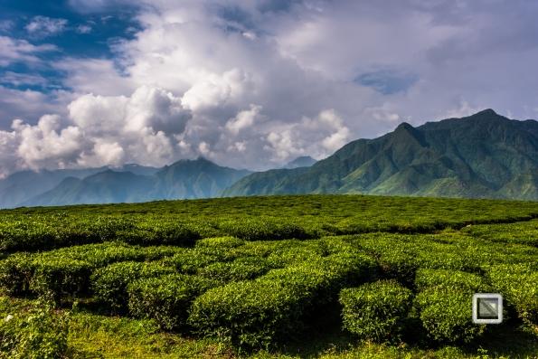 vietnam-mu_cang_chai-yen_bai_province-44
