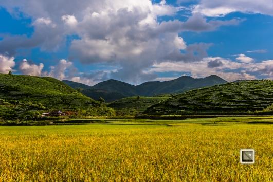 vietnam-mu_cang_chai-yen_bai_province-52