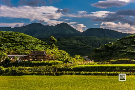 vietnam-mu_cang_chai-yen_bai_province-56