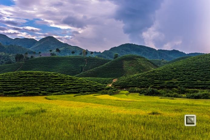 vietnam-mu_cang_chai-yen_bai_province-58