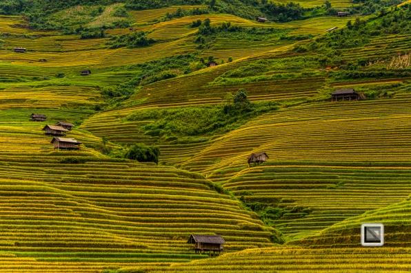 vietnam-mu_cang_chai-yen_bai_province-84