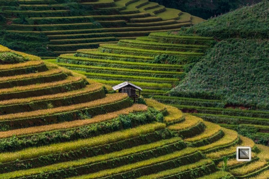 vietnam-mu_cang_chai-yen_bai_province_2-19