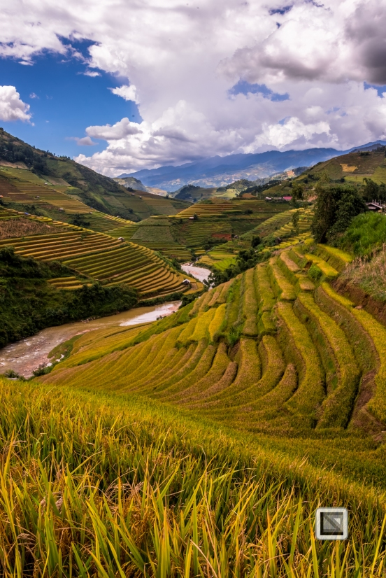 vietnam-mu_cang_chai-yen_bai_province_2-4