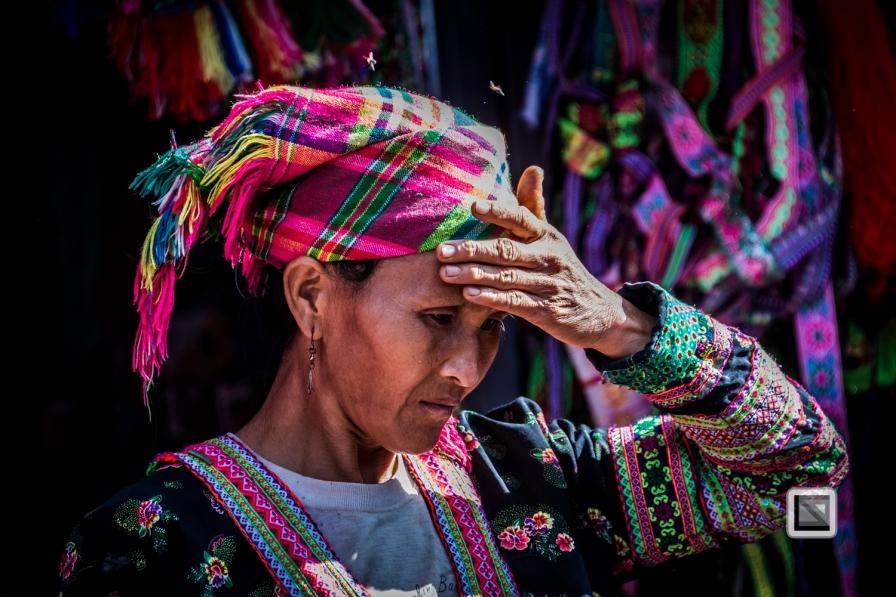 vietnam-sin_ho-29