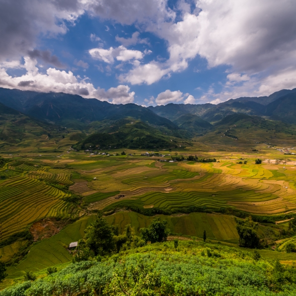 vietnam-van_chan-mu_cang_chai-yen_bai_province-142
