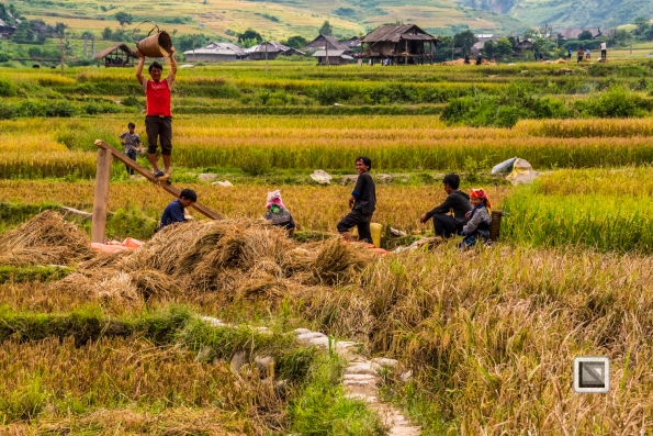 vietnam-van_chan-mu_cang_chai-yen_bai_province-155