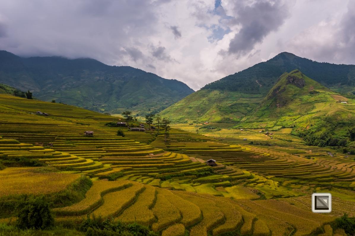 vietnam-van_chan-mu_cang_chai-yen_bai_province-159