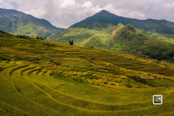 vietnam-van_chan-mu_cang_chai-yen_bai_province-163