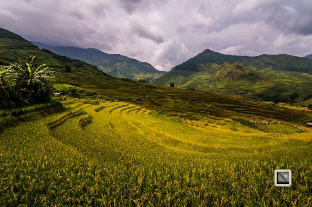 vietnam-van_chan-mu_cang_chai-yen_bai_province-171