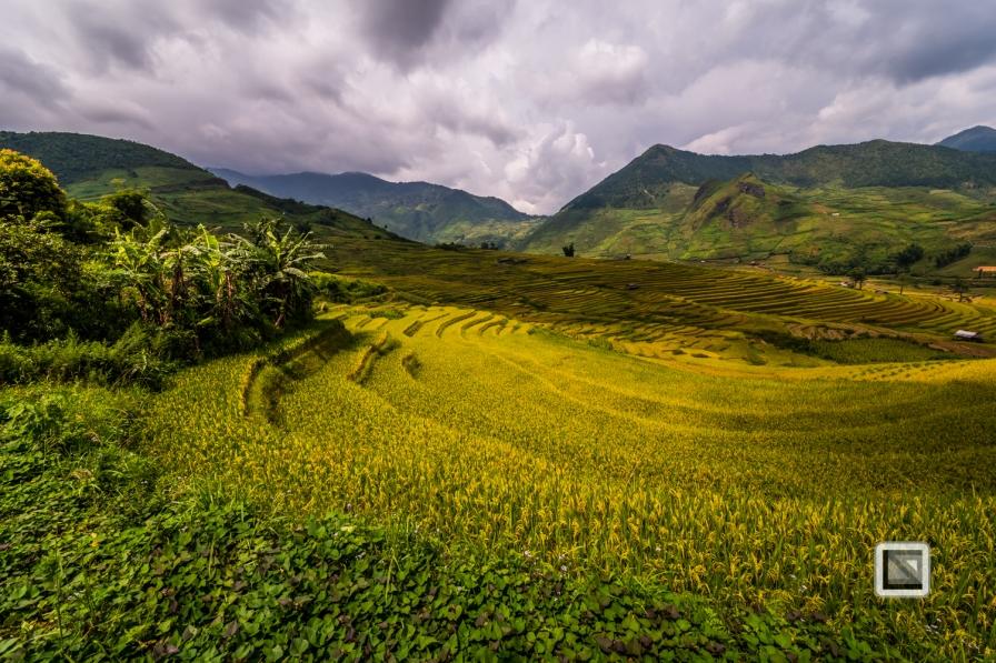 vietnam-van_chan-mu_cang_chai-yen_bai_province-172