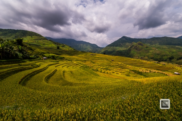 vietnam-van_chan-mu_cang_chai-yen_bai_province-180