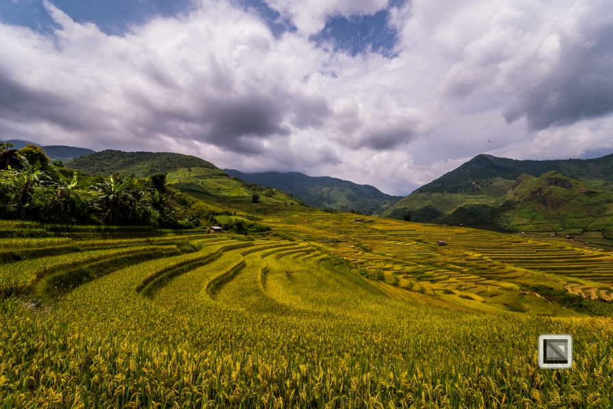 vietnam-van_chan-mu_cang_chai-yen_bai_province-181
