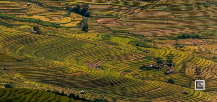 vietnam-van_chan-mu_cang_chai-yen_bai_province-54