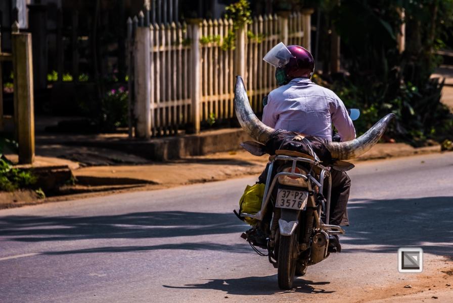 vietnam-bac_ha-1