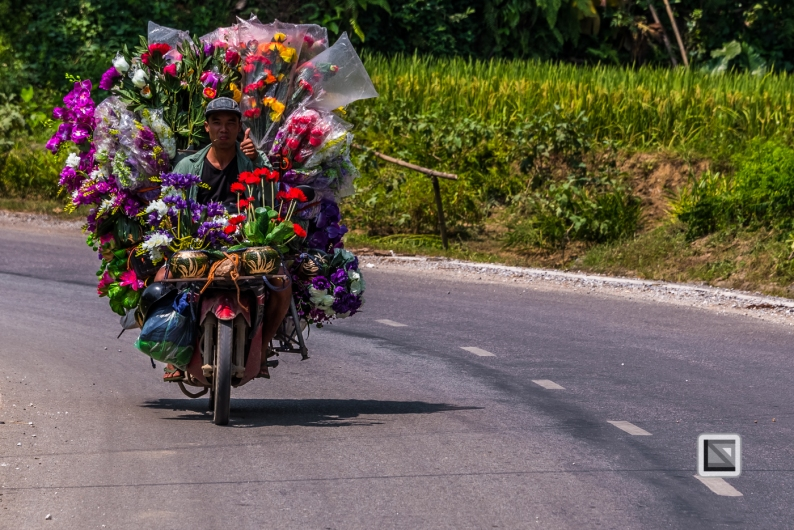 vietnam-bac_ha-2