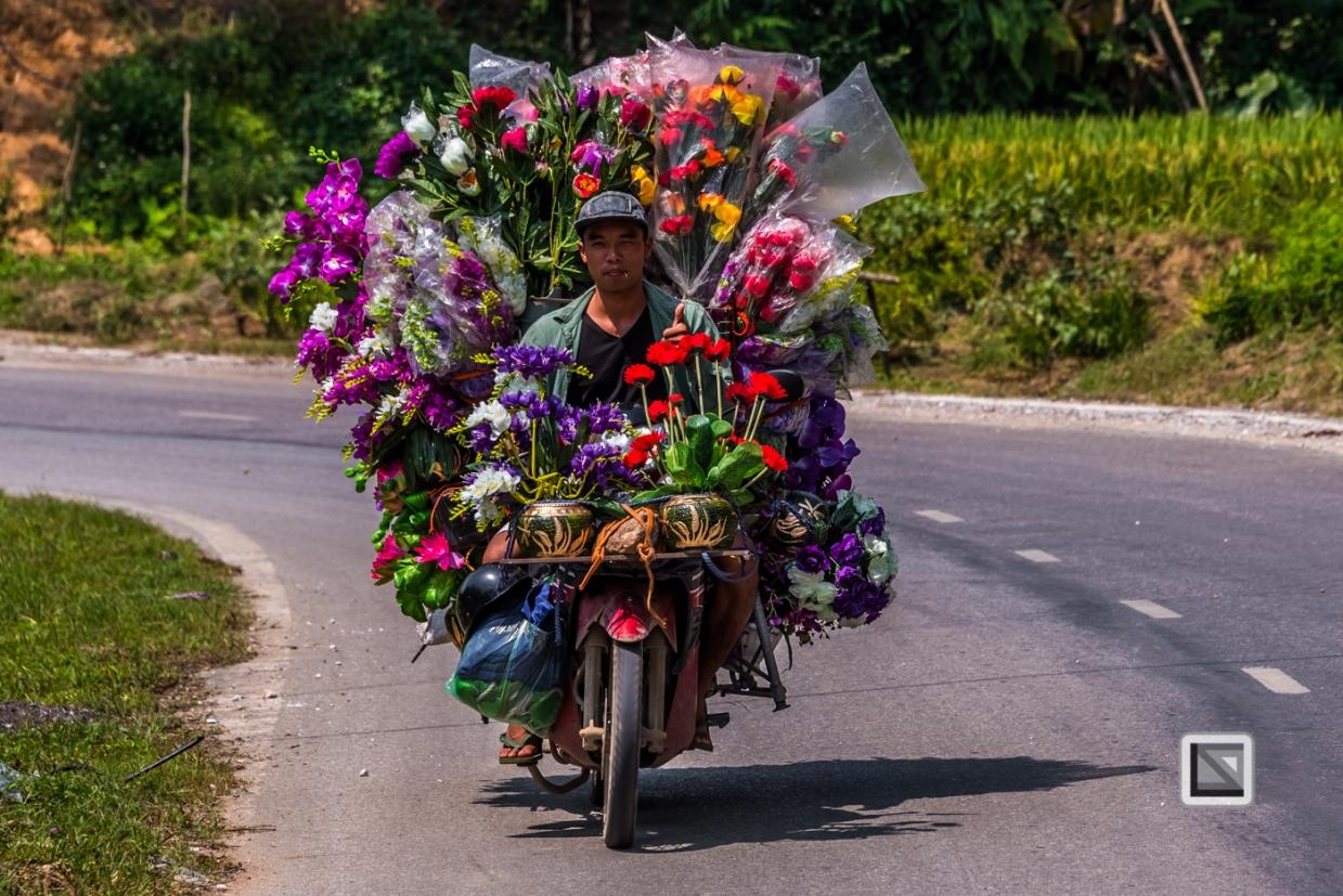 vietnam-bac_ha-3