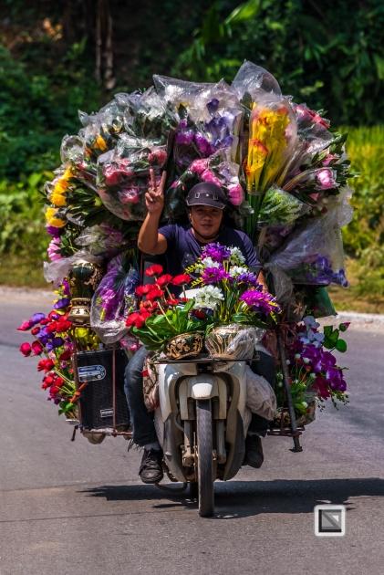 vietnam-bac_ha-4-2