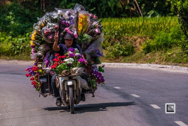 vietnam-bac_ha-4