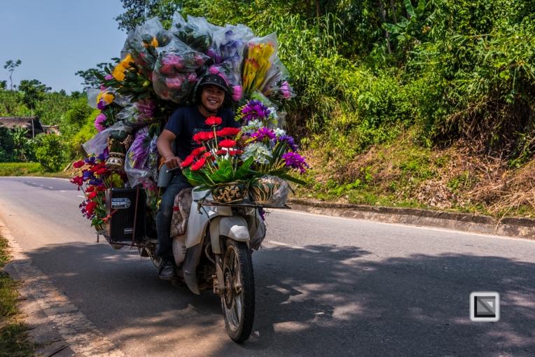 vietnam-bac_ha-6