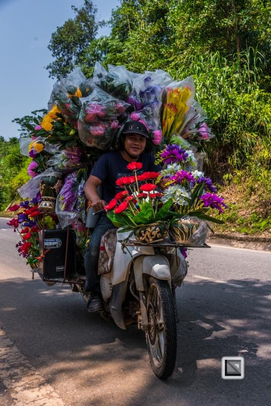vietnam-bac_ha-8