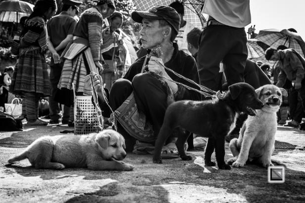 vietnam-bac_ha_market-12