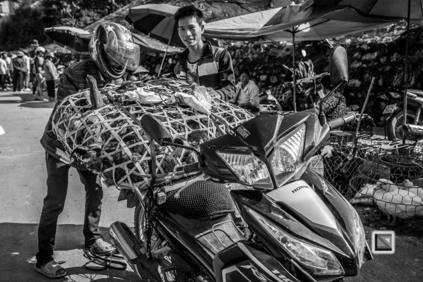 vietnam-bac_ha_market-27