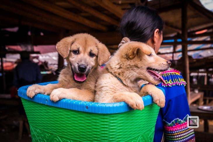 vietnam-can_cau_market-49