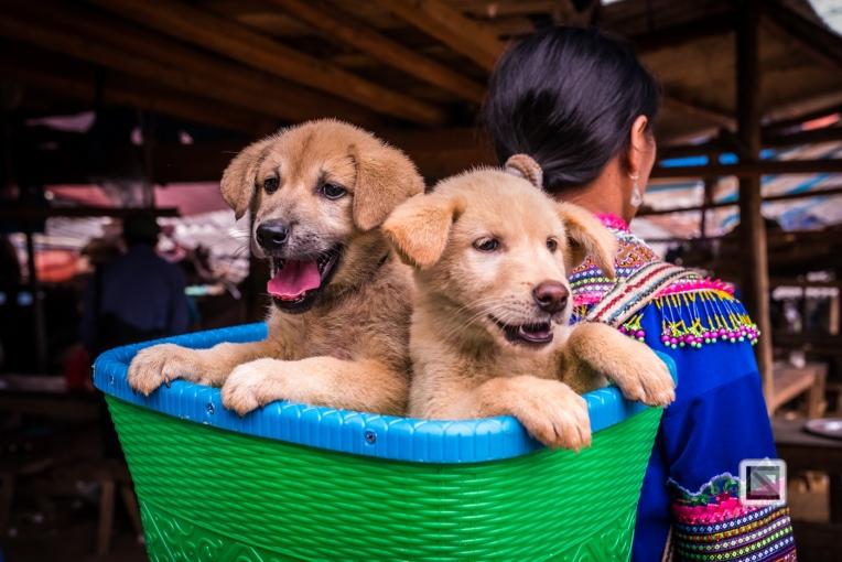 vietnam-can_cau_market-50