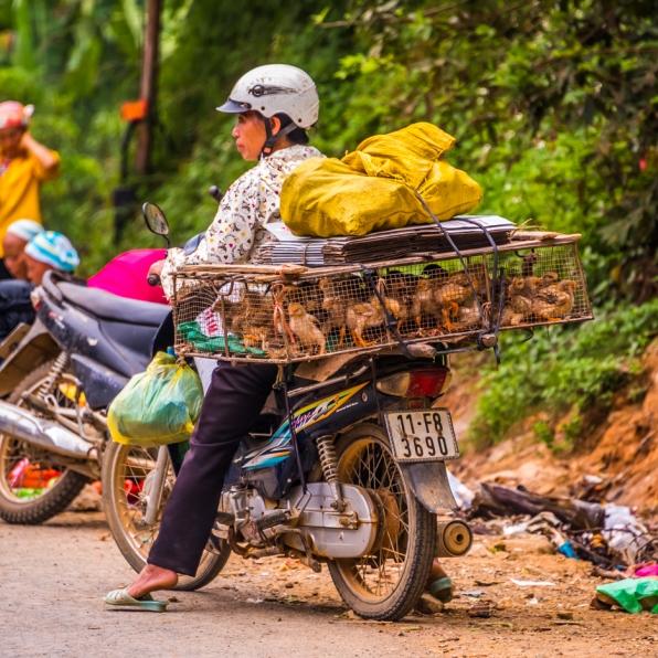 vietnam-cao_bang_province-22